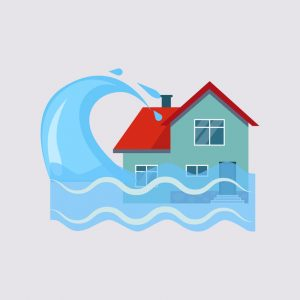 water damage Fort Collins